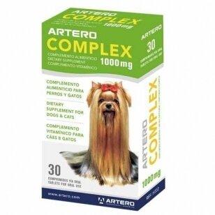 Artero Complex 30 tabletek (Kopija)