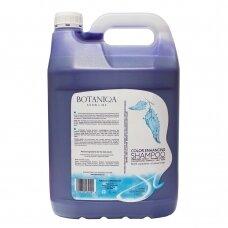 """""""Botaniqa Show Line Color Enhancing Shampoo"""" - balinantis šampūnas baltam ir šviesiam kailiui"""