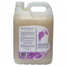 Botaniqa Show Line Harsh&Shiny Coat Shampoo - šampūnas šiurkščiaplaukiams šunims