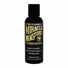 Chris Christensen Miracle Moisture Conditioner - giliai drėkinanti kaukė sausiems plaukams