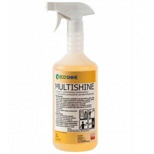 Eco Shine Multishine 1L