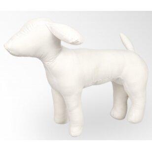Šuns manekenas / modelis