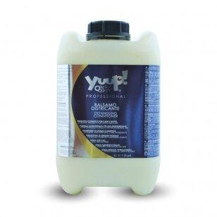 Yuup! Professional Detangling Conditioner - profesionalus drėkinamasis, iššukavimą palengvinantis kondicionierius. Talpa: 10L